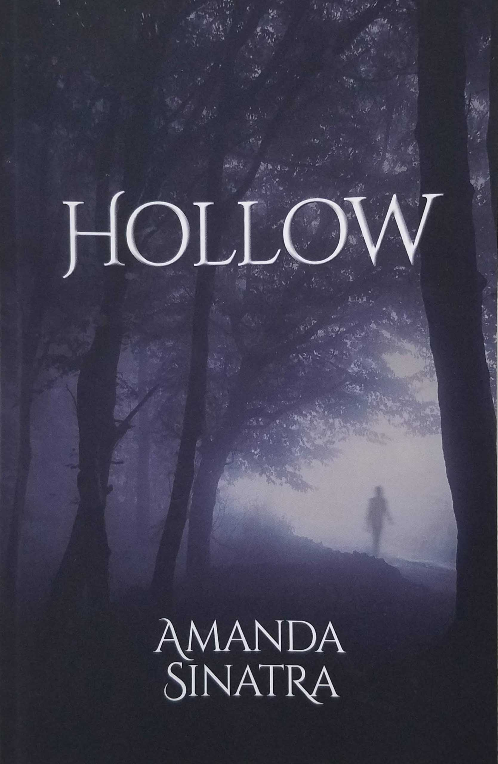 Hollow Book Cover
